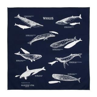 Bandana baleine coton bleu
